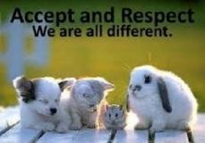 AcceptandRespect